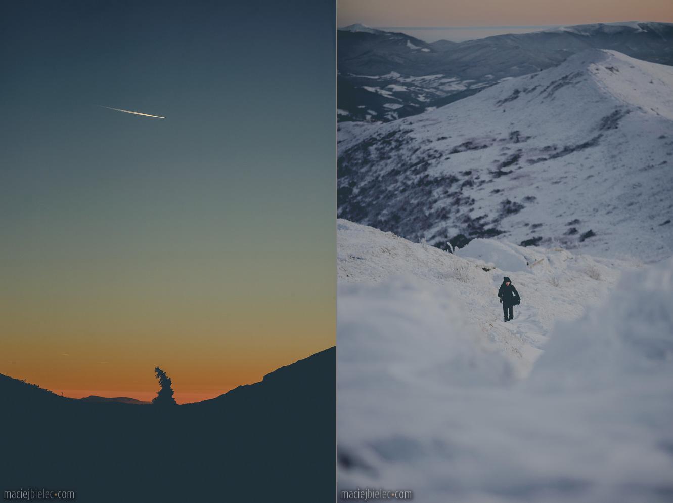 Samotny świerk / podejście na Halicz zimą