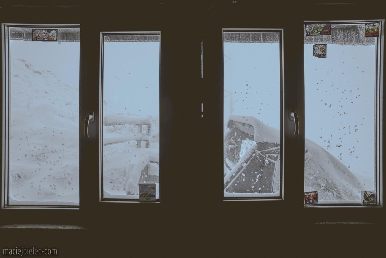 Za oknem Chatki Puchatka