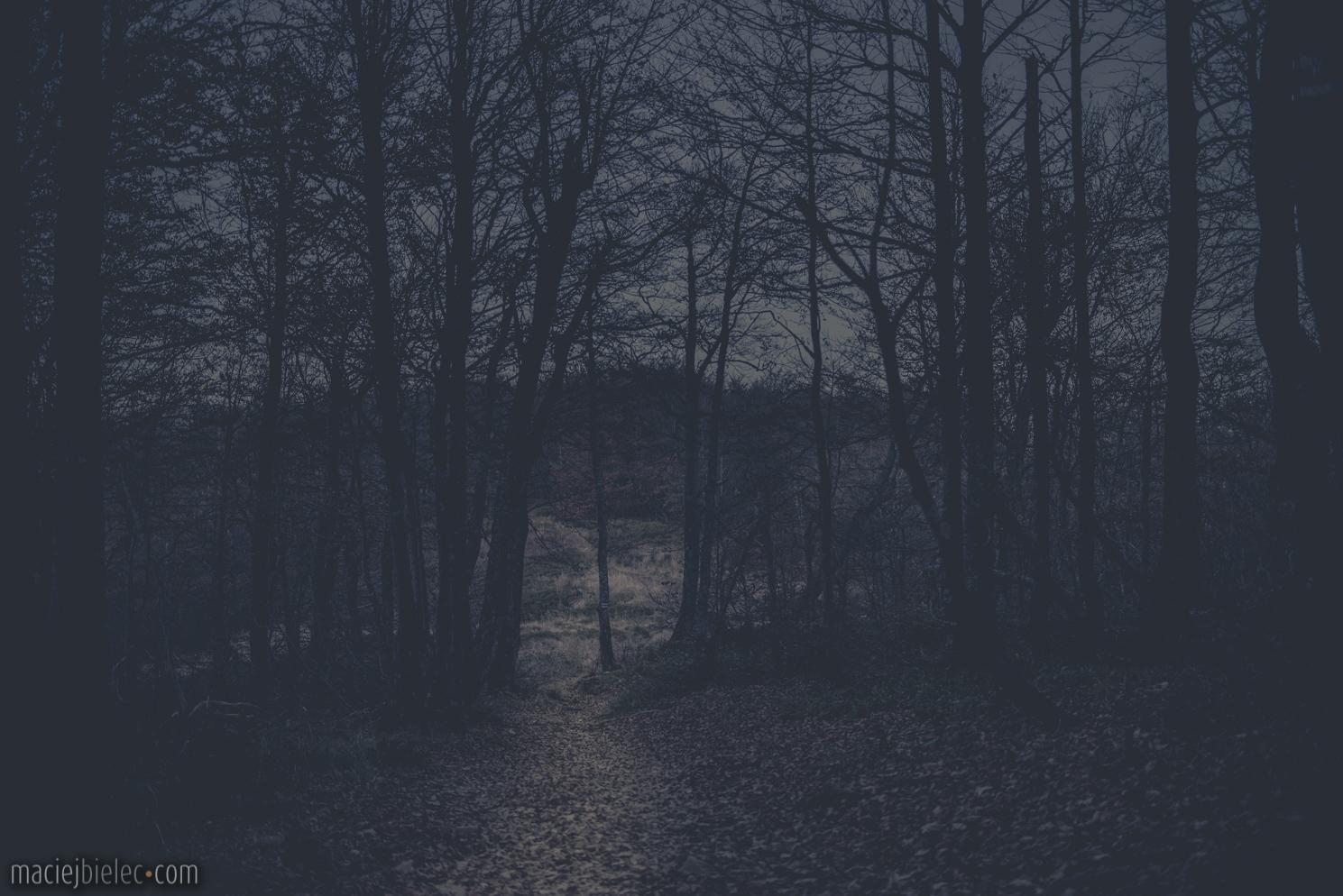 Przebywanie na szlaku nocą Bieszczady