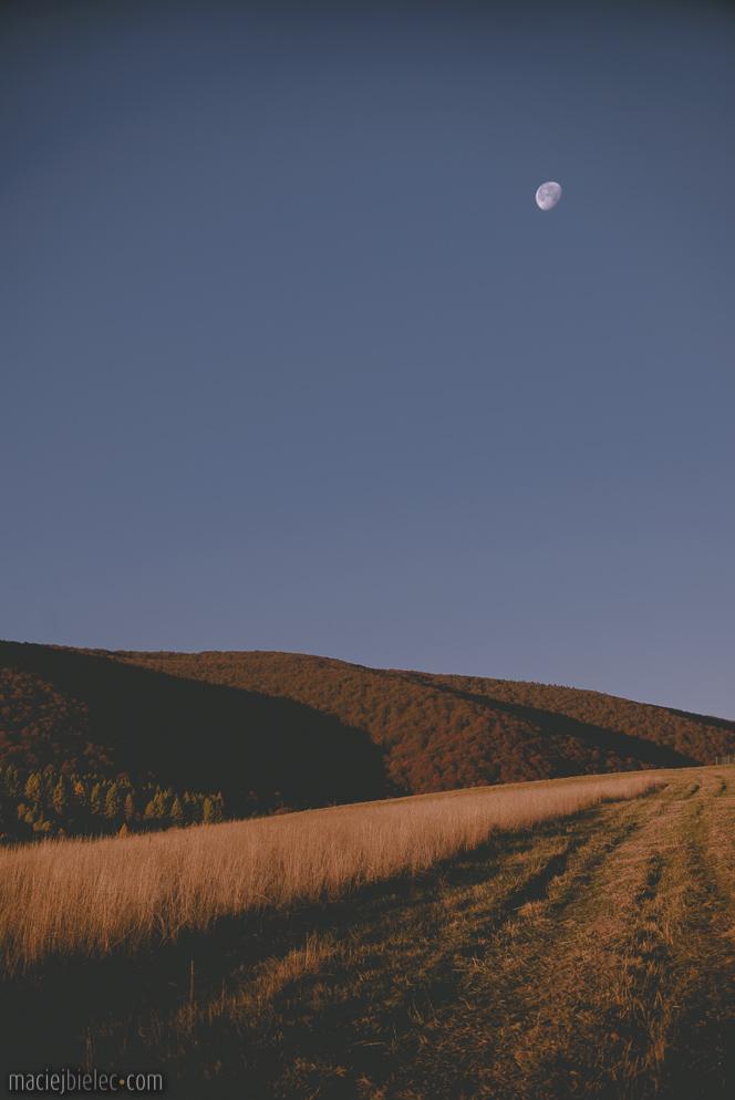 Księżyc po świcie